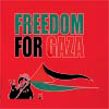Freedom For Gaza Hooded Sweatshirt