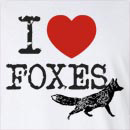 I Love Foxes Long Sleeve T-Shirt